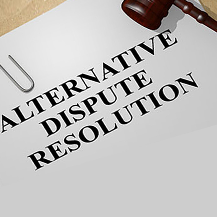 Alternative Dispute Resolution/Litigation Support